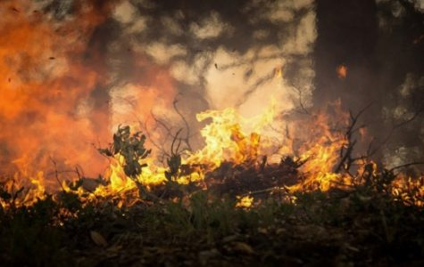 El Dorado County plans for Reducing Wildfire Risk