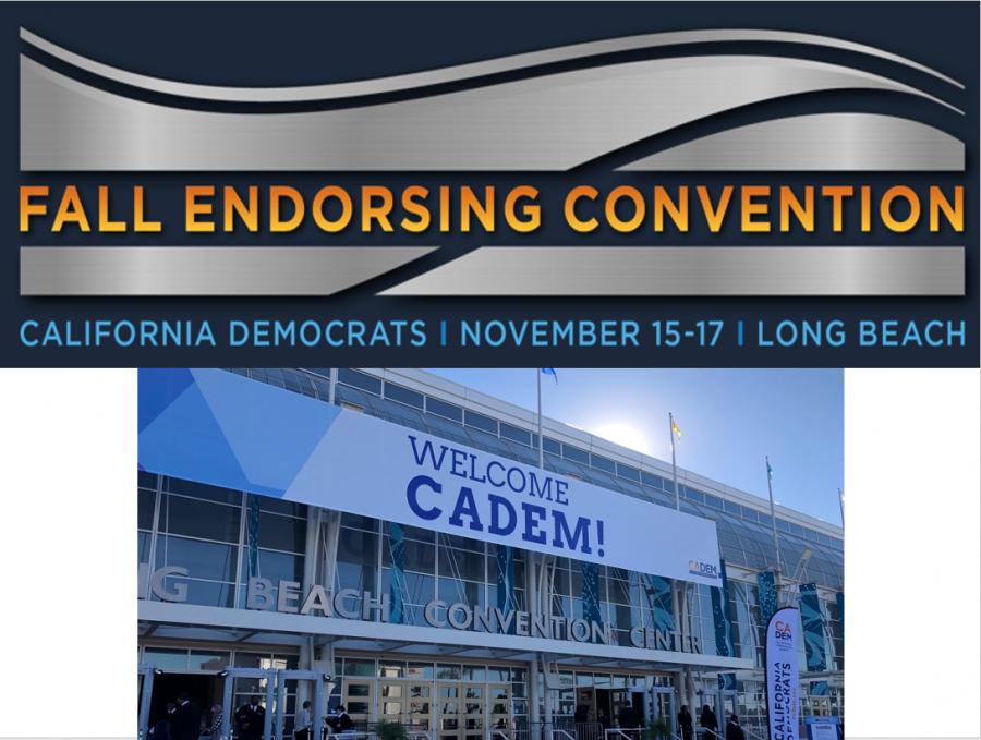 CDP Endorsing Convention – El Dorado County Delegation makes a splash